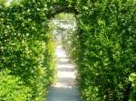 Coutances - Le jardin